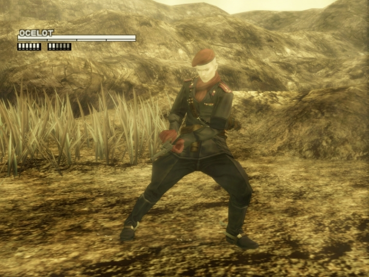 Metal Gear Solid 3 : Snake Eater Playstation 2 | 14