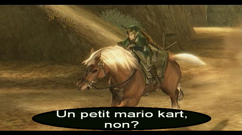The Legend of Zelda : Twilight Princess WII | 48