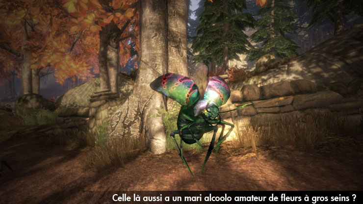 Fable 2 Xbox 360 | 39