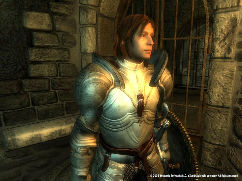The Elder Scrolls IV : Oblivion PC | 3