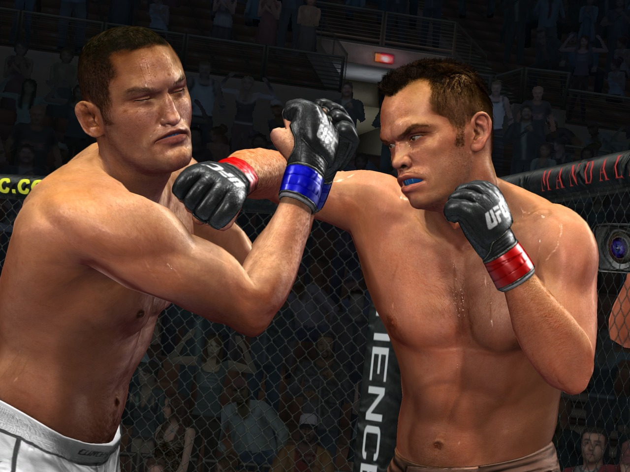 UFC 2009 Undisputed Playstation 3 | 9