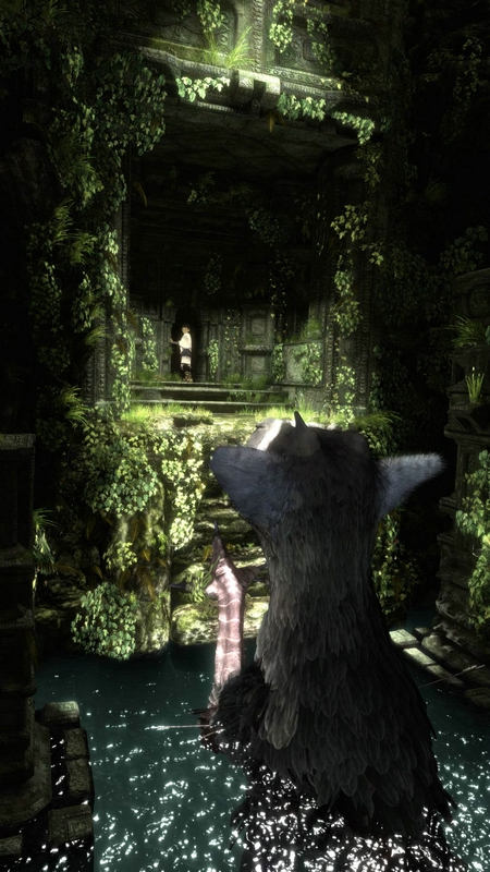 The Last Guardian Playstation 3 | 24
