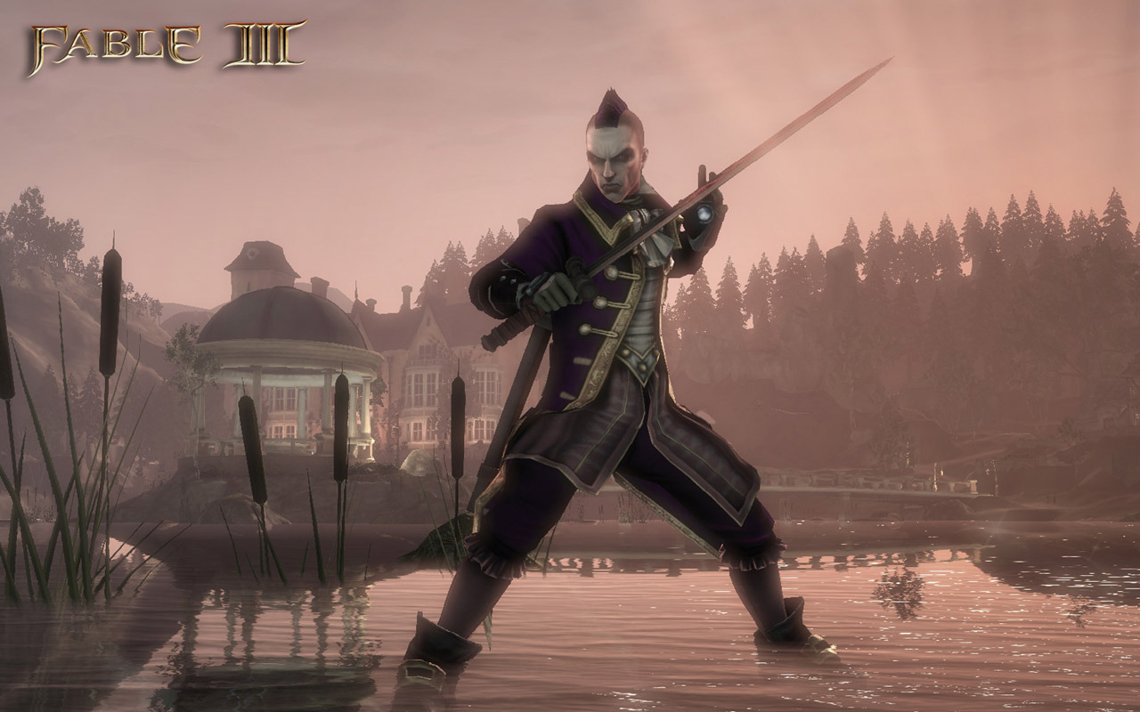 Fable 3 PC | 8