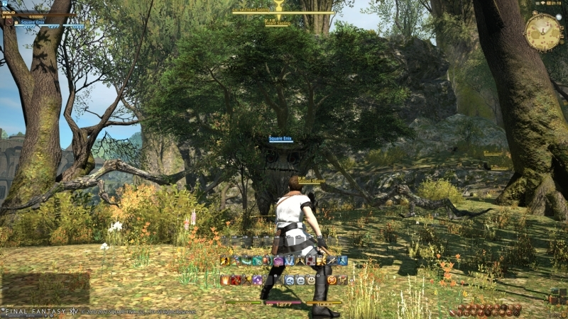 Final Fantasy XIV Online PC | 40