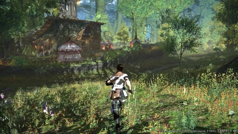 Final Fantasy XIV Online PC | 49