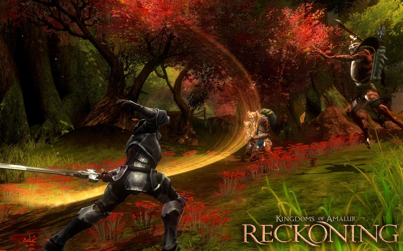 Kingdoms of Amalur : Reckoning Playstation 3 | 19