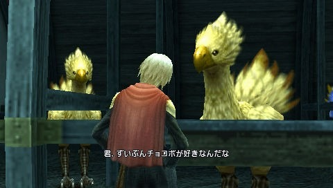 Final Fantasy Type-0 Playstation Portable | 14