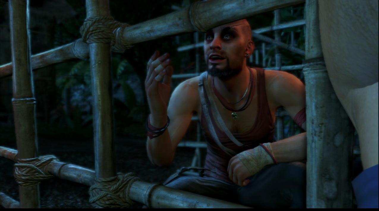 Far Cry 3 Playstation 3 | 8