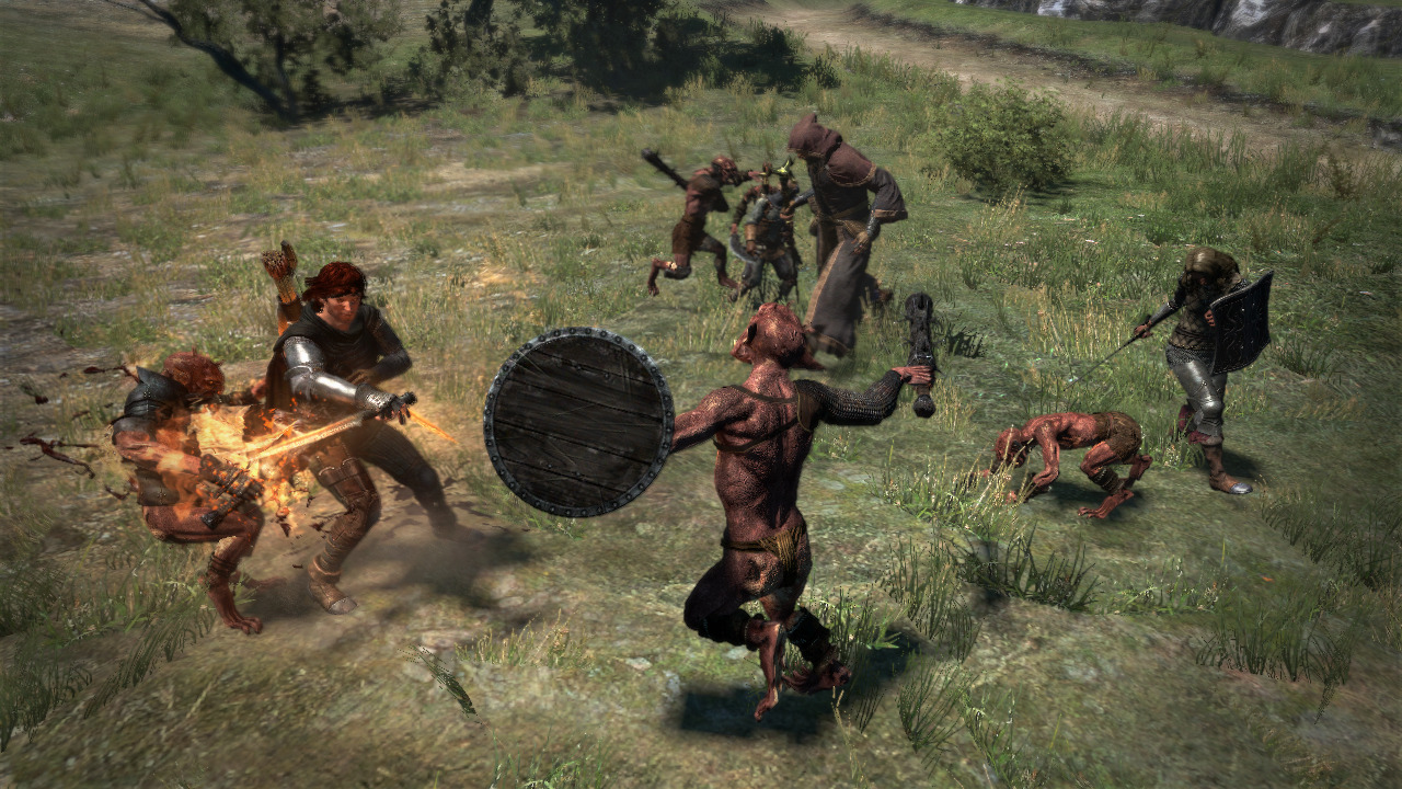 Dragon's Dogma Playstation 3 | 3