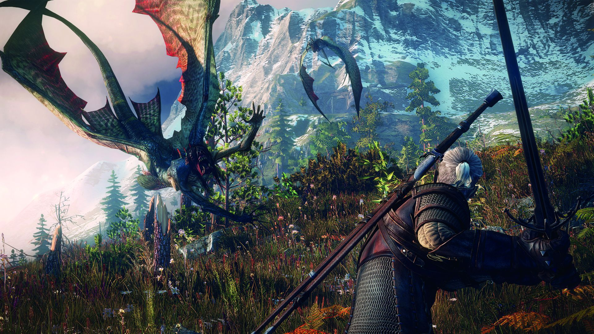 The Witcher 3 : Wild Hunt, PC | 3