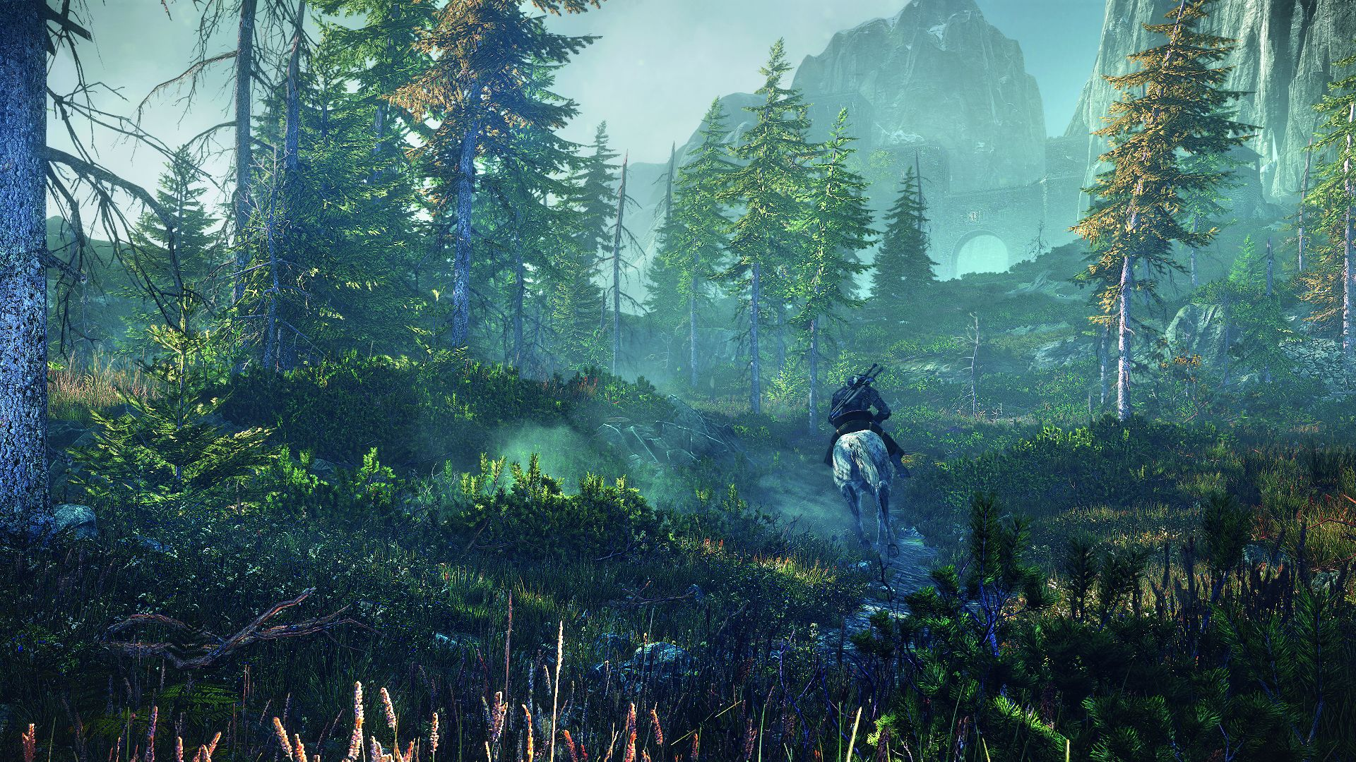 The Witcher 3 : Wild Hunt, PC | 4