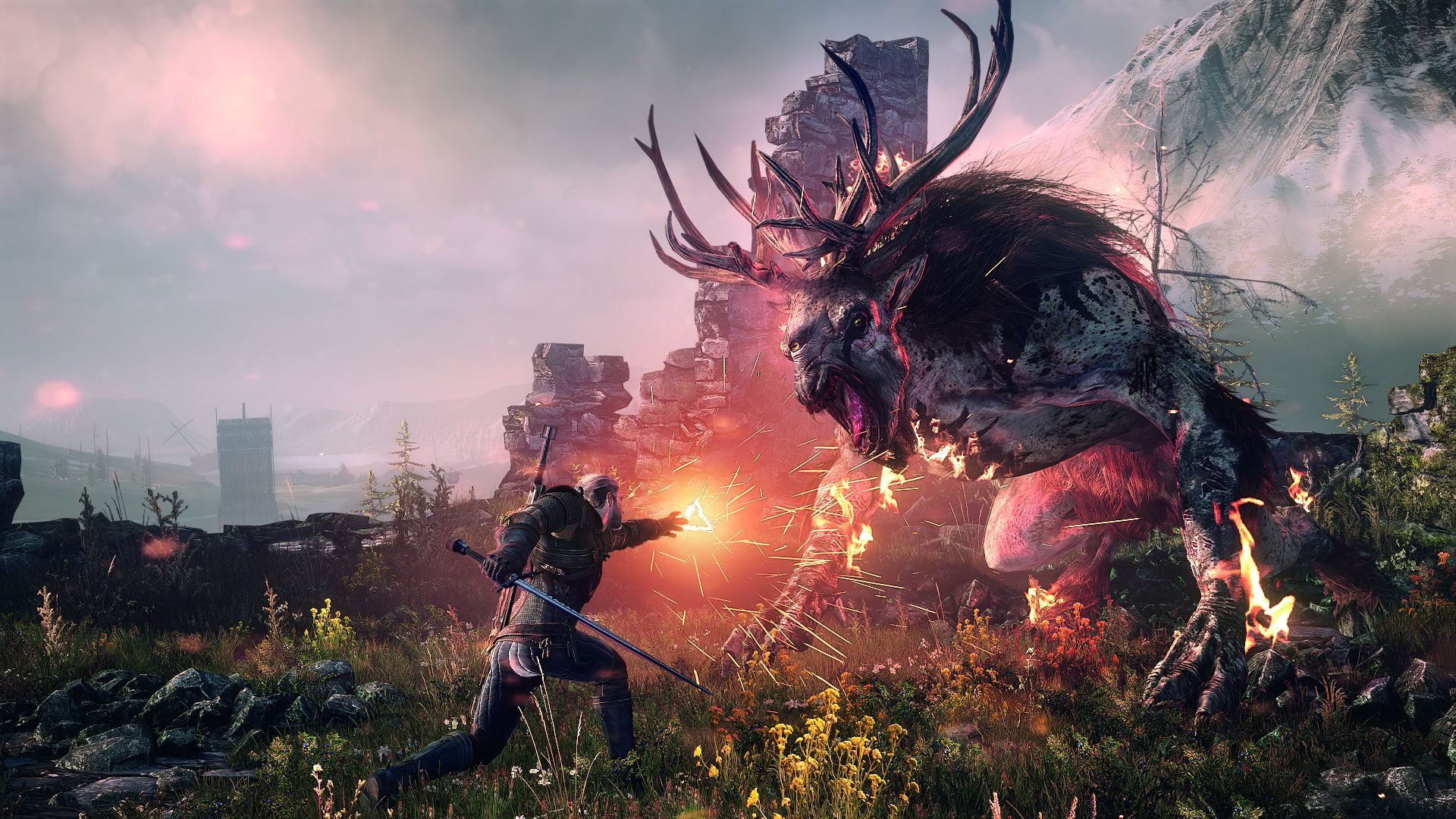 The Witcher 3 : Wild Hunt, PC | 7